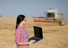 Frau mit Laptop an der Weizenernte Lizenzfreie Stockbilder