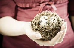 Frau mit Nest Lizenzfreie Stockfotografie