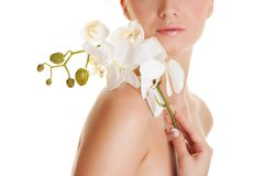 Frau mit Orchideeblume Stockbild