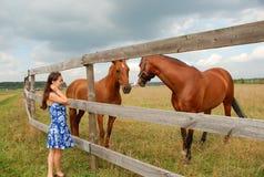 Frau mit Pferden Lizenzfreies Stockbild