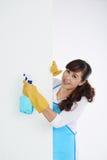 Frau mit Reinigungsspray Lizenzfreies Stockfoto