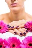 Frau mit schönen manikürten purpurroten Nägeln stockfotografie