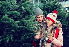 Frau mit Tochter kaufendem Weihnachtsbaum im Markt Stockfoto