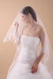 Frau mit transparentem Hochzeits-Schleier Stockfotos