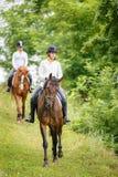 Frau mit zwei Reitern auf den Pferden, die unten vom Hügel gehen Lizenzfreie Stockfotografie