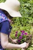 Frau pflanzt Blumen Stockfoto