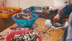 Frau säubert und schneidet frische Fische im Fischmarkt stock video