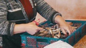 Frau säubert und schneidet frische Fische im Fischmarkt stock footage