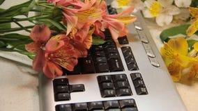 Frau ` s übergibt Tastaturblumen romantisches Geschenk stock footage