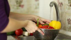 Frau ` s übergibt waschenden farbigen Pfeffer in der Wanne in der Küche Gesundes Essenkonzept stock video