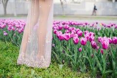 Frau ` s Beine auf einem Gebiet von Tulpen Stockfotografie