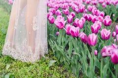 Frau ` s Beine auf einem Gebiet von Tulpen Lizenzfreie Stockbilder