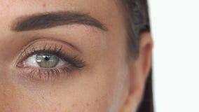 Frau ` s grünes Auge mit einer Braue und Sommersprossen auf weißem Hintergrund stock video footage