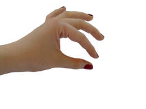 Frau ` s Hand auf lokalisiertem und transparentem Hintergrund Stockfotografie