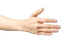 Frau ` s Hand, die bereit ist, ein Abkommen zu machen Lizenzfreie Stockfotos
