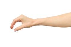 Frau ` s Hand, die etwas ergreift oder misst lizenzfreie stockfotos