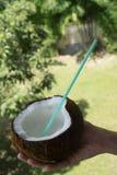 Frau ` s Hand, die Kokosnuss über unscharfem Gartenhintergrund hält Stockfoto