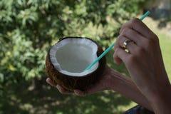 Frau ` s Hand, die Kokosnuss über unscharfem Gartenhintergrund hält Lizenzfreies Stockbild