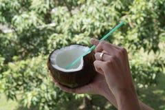Frau ` s Hand, die Kokosnuss über unscharfem Gartenhintergrund hält Lizenzfreie Stockfotos