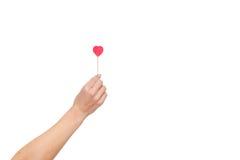 Frau ` s Hand, die rote Herzform auf Stock hält Lokalisiert auf Weiß Rote Rose und Inneres über Weiß Lizenzfreies Stockbild