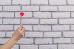 Frau ` s Hand, die rote Herzform auf Stock hält Weißes Backsteinmauer baskground Rote Rose und Inneres über Weiß Lizenzfreie Stockfotografie