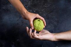 Frau ` s Hand gibt den Apfel zur Mann ` s Hand Hände, die einen Adam-` s Apfel halten Stockbild