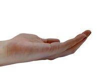 Frau ` s Hand mit offenem lokalisiertem und transparentem Hintergrund der Palme Lizenzfreies Stockfoto