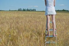 Frau steht auf dem Stepladder Stockbilder