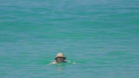 Frau swimmingin der Ozean stock video
