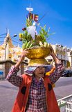 Frau trägt auf seinen Hauptkörben von grünen Bananen und von Kokosnüssen FO stockfotos
