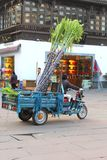 Frau transportiert Zuckerrohr in einem triycle, Tunxi/Huangshan, China Stockfotos
