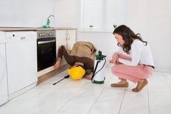 Frau und Arbeitskraft mit Schädlingsbekämpfungsmittel-Sprüher stockfotos