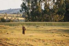 Frau und Bauernhof, Äthiopien Stockbild