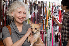 Frau und Chihuahua im Geschäft für Haustiere Lizenzfreie Stockfotos