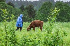 Frau und eine Kuh Stockbilder
