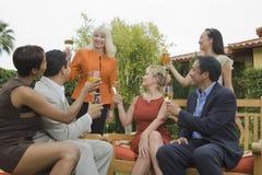 Frau und Freunde, die mit Wein feiern Stockbild