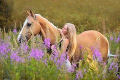 Frau und goldenes Pferd Stockbilder