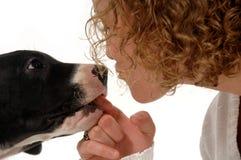 Frau und Hund Stockbild