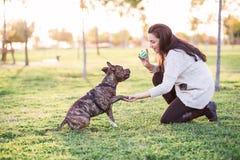 Frau und Hund, die Hand und Tatze rütteln lizenzfreies stockbild