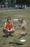 Frau und Hund, die am Hunde- Frisbee-Wettbewerb, Westwood, Los Angeles, CA üben Lizenzfreie Stockbilder