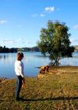 Frau und Hund in See Eildon Lizenzfreie Stockfotografie