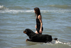 Frau und Hunde auf dem Meer Stockfotografie