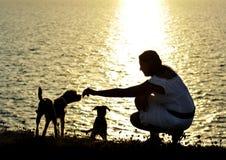 Frau und Hunde silhouettieren Sommerstrandsonnenuntergang in dem Meer, das zusammen spielt Stockfotos