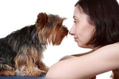 Frau und ihr Hund Stockfotografie