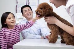 Frau und Mädchen mit Schoßhund im Büro des Tierarztes lizenzfreies stockbild