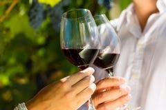 Frau und Mann in trinkendem Wein des Weinbergs Stockfotos