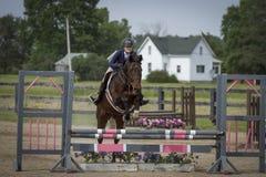 Frau und Pferd, die rosa und graues oxer springen Lizenzfreie Stockfotos