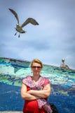 Frau und Seemöwen in einem Hafen stockfotos