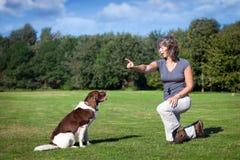 Frau unterrichtet ihrem Hund einen Befehl Stockfoto