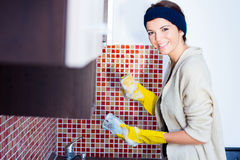Frau, welche die Teller wäscht Lizenzfreies Stockbild